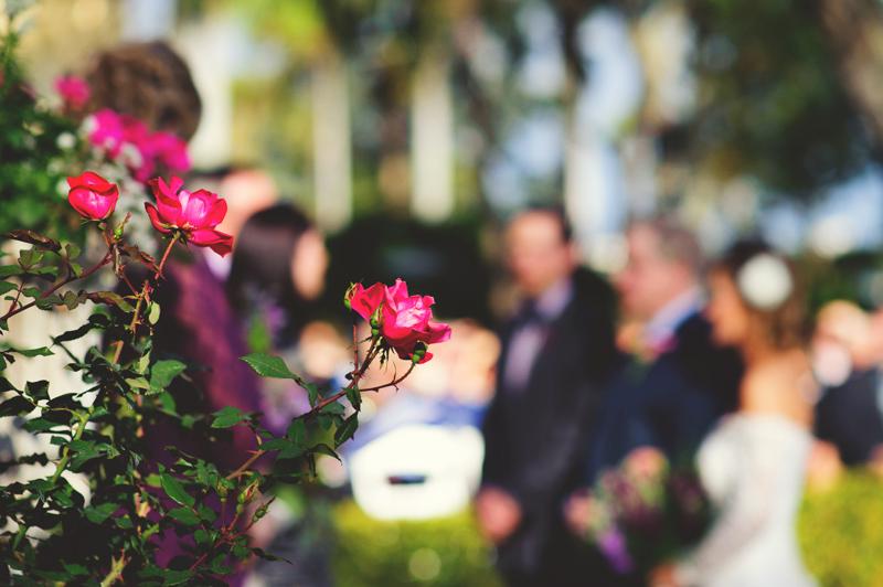 backyard-tampa-wedding-jason-mize-0054
