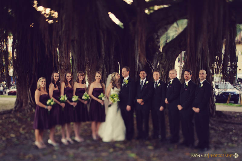 schaub park bridal party