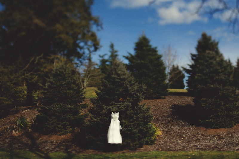 Biltmore Estate Wedding: wedding dress