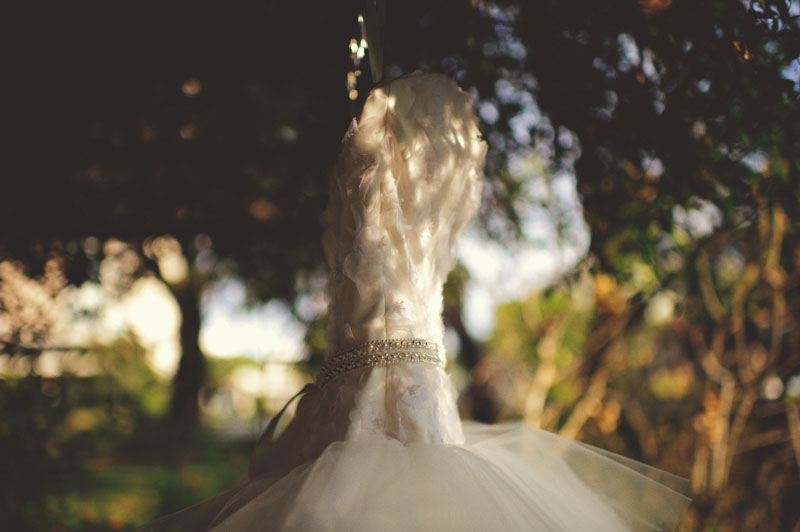 Selby Gardens Wedding: dress