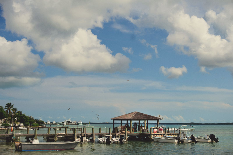 Harbour Island conch shell dock