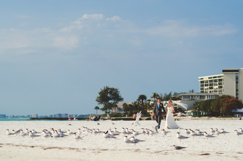 siesta-key-backyard-wedding-photography-jason-mize-131