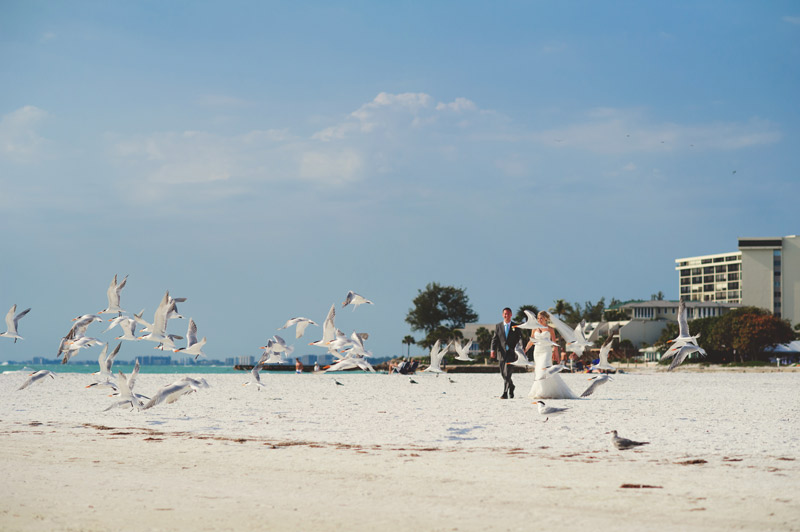 siesta key backyard wedding: bride and groom and seagulls