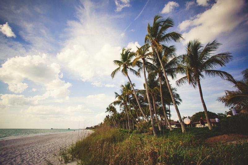naples backyard beach wedding: breezy palm trees, beach
