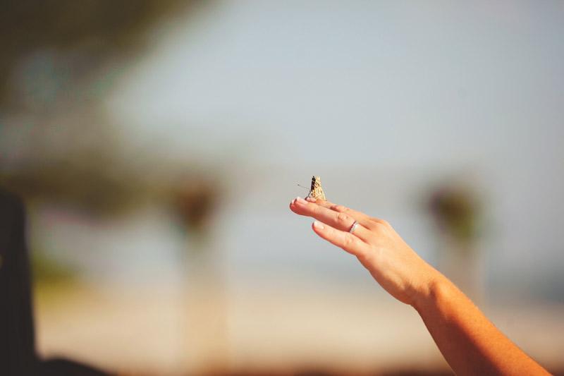 naples backyard beach wedding: bride butterfly release