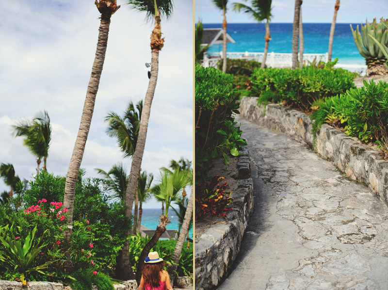 harbour island bahamas wedding: corals sands back path