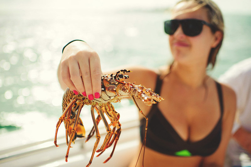 harbour island bahamas wedding: lobster
