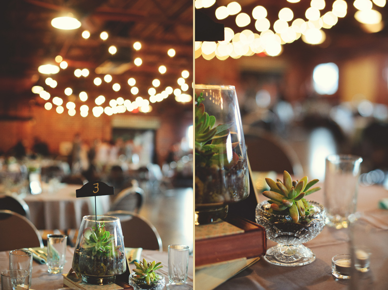 winter park farmers market wedding: succulents terrarium centerpieces