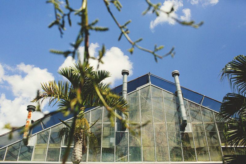 modern-vintage-selby-gardens-wedding-jason-mize-032