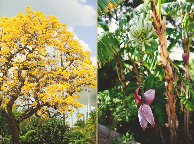 modern-vintage-selby-gardens-wedding-jason-mize-033