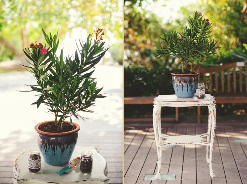 modern-vintage-selby-gardens-wedding-jason-mize-043
