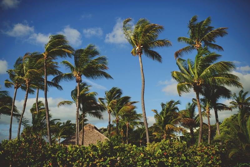 postcard-inn-holiday-isle-wedding-jason-mize-0018.JPG