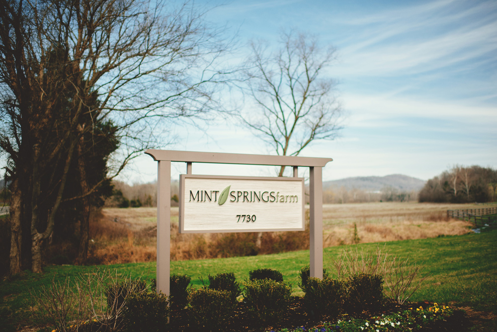 mint springs farm sign