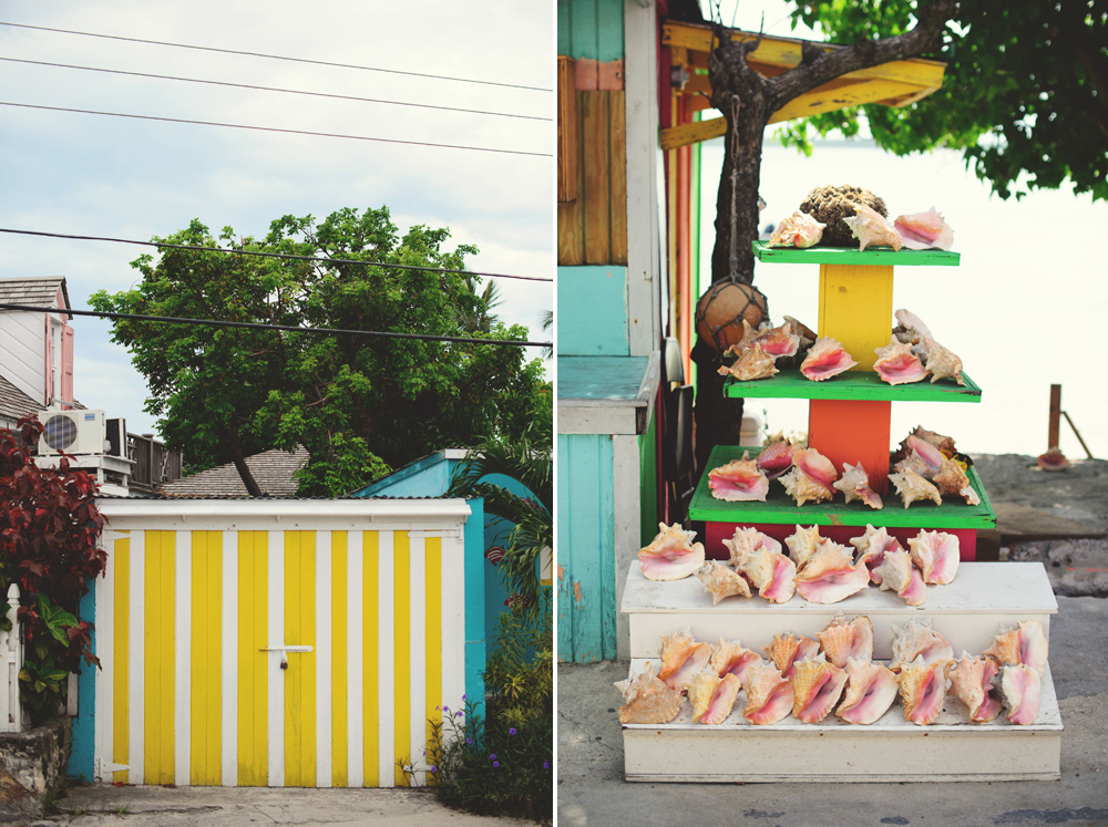 harbour island wedding: conch shells