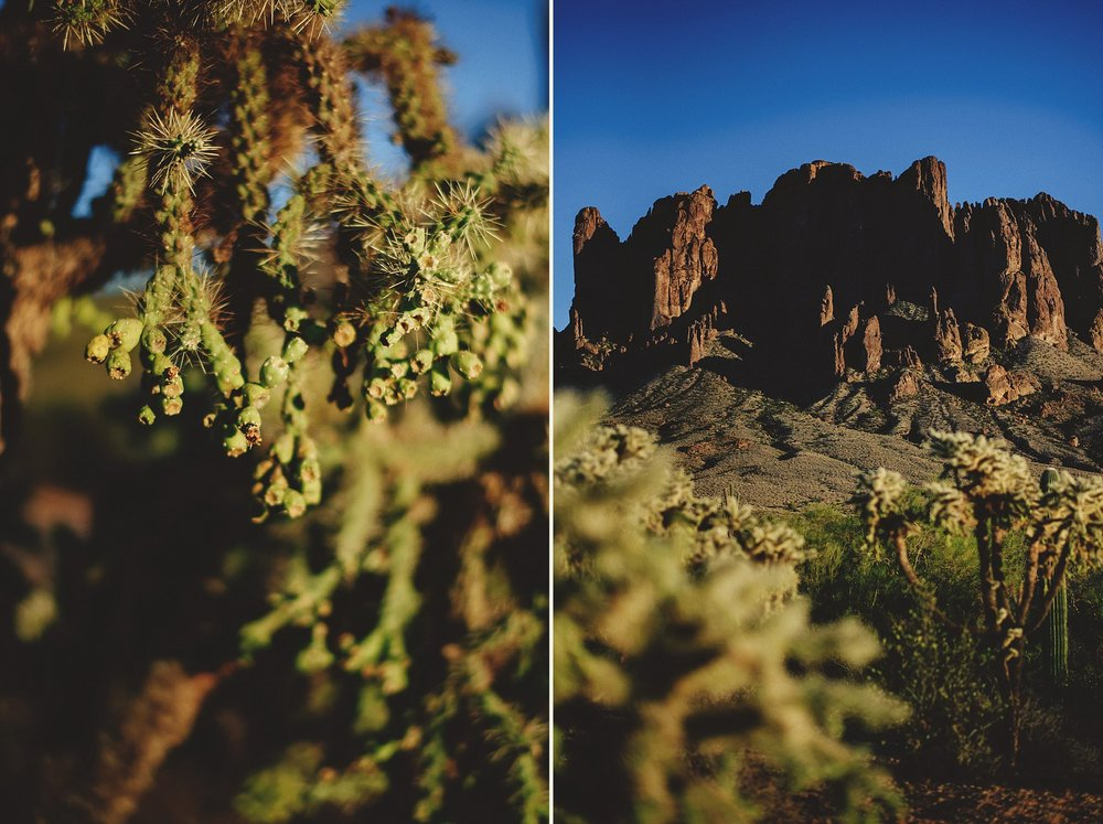 superstition-mountains-desert-engagement-photos-0013.jpg