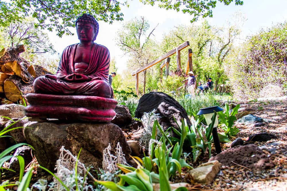 On the Meditation Path at Blue Sky Retreat Center