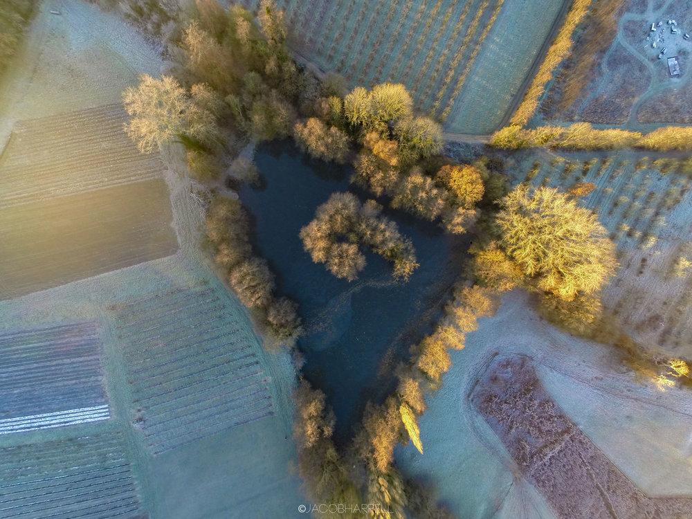 30_11_16_Frost_Farm_Drone-142.jpg