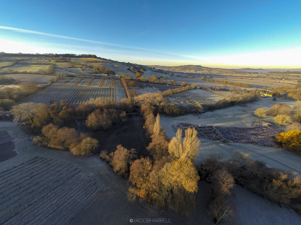 30_11_16_Frost_Farm_Drone-347.jpg