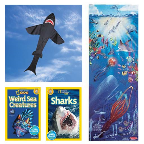 sharks and sea creatures gift.jpg
