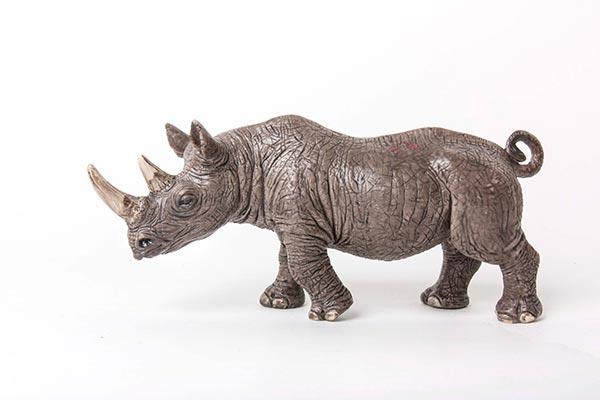 rhino-72w.jpg