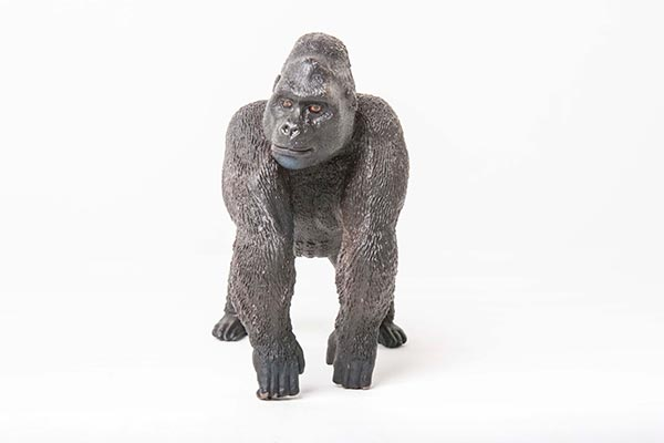 gorilla-72w.jpg