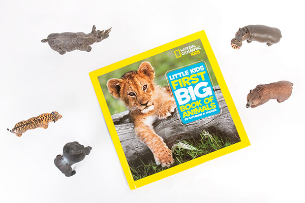 first-big-book-of-animals-72w.jpg