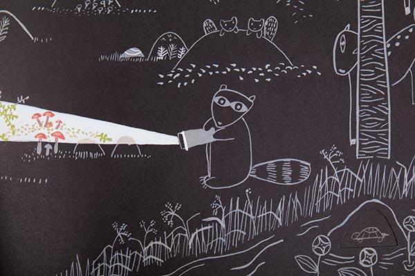 flashlight-book-racoon-web.jpg