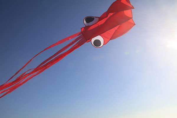 kite-image