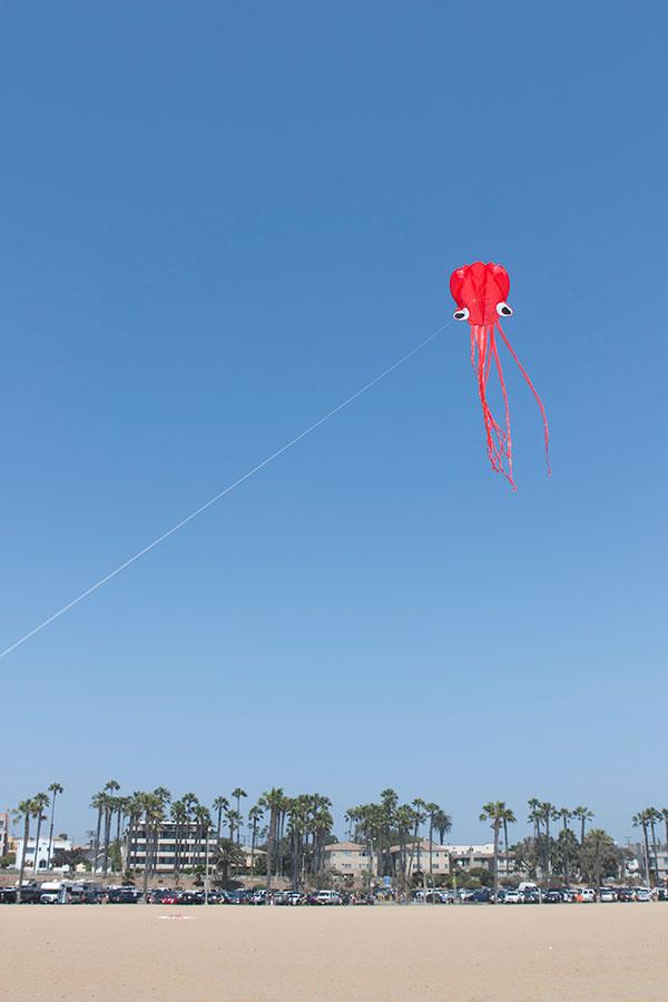 kite-on-the-beach_web.jpg