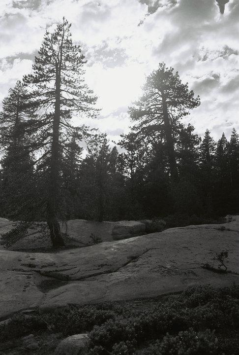 Bear Valley, CA