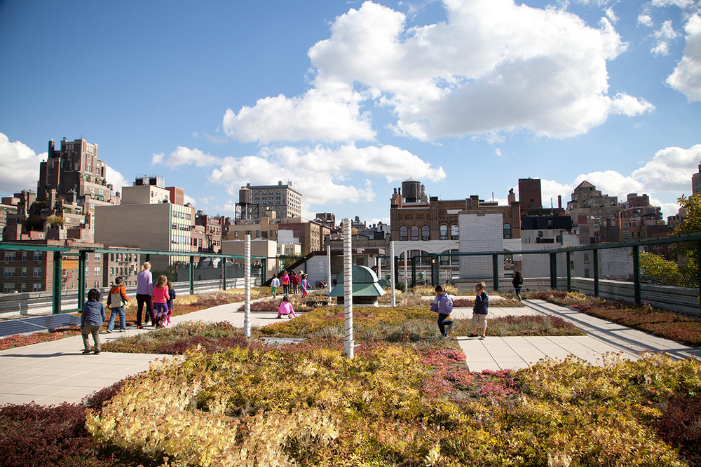 Green Roof, P.S. 41 Greenwich Village