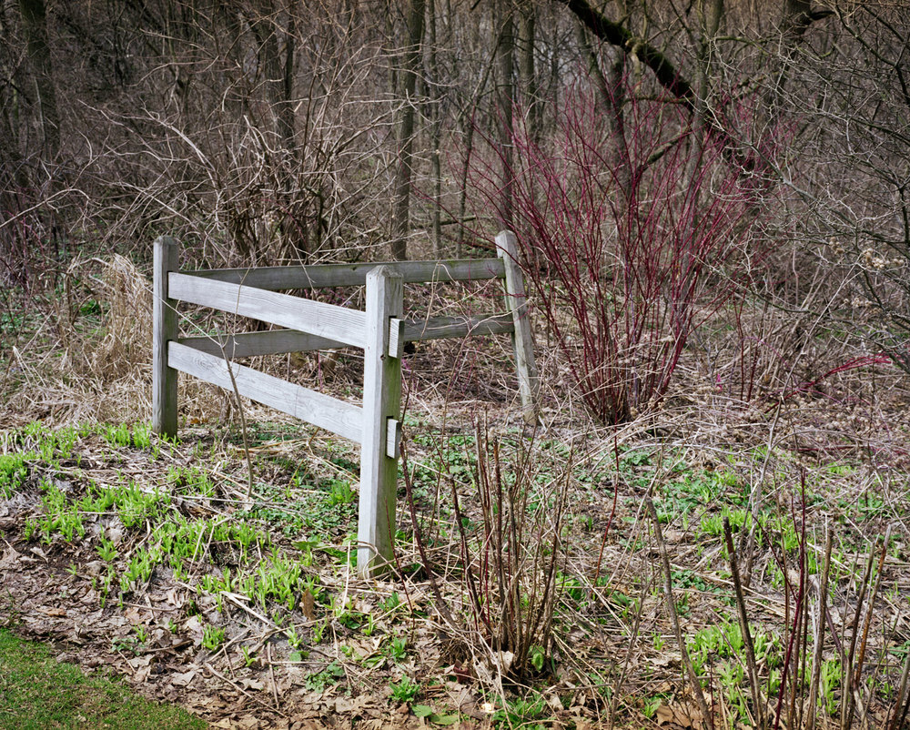 Lost Fence