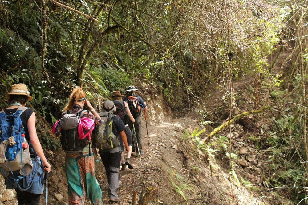 Myself and the gang trekking through the jungle on the Salkantay trail - Peru.