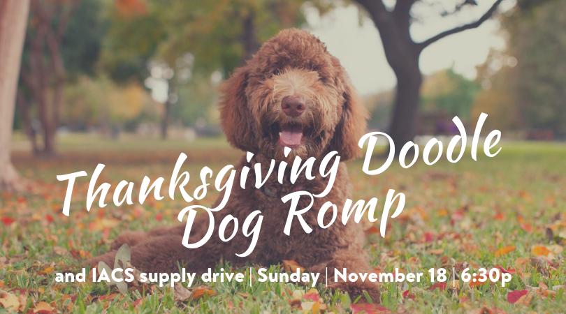 Thanksgiving Doodle Dog Romp.png