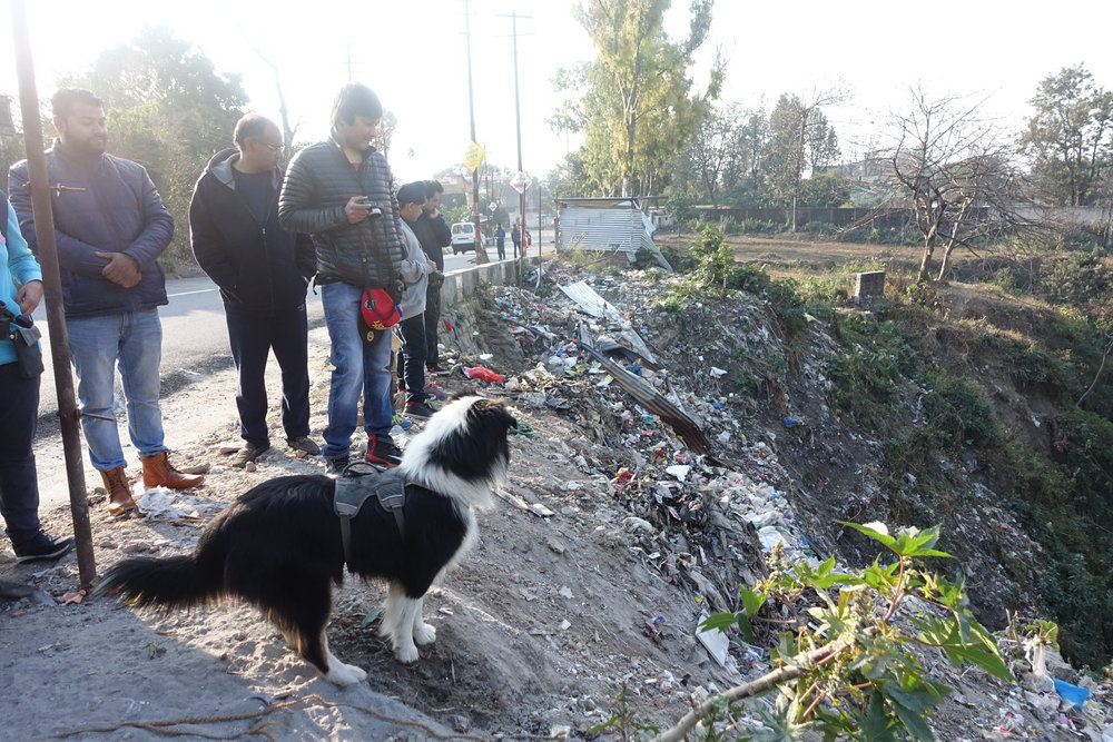 One of the numerous garbage dumping sites in a popular area of Dehradun.