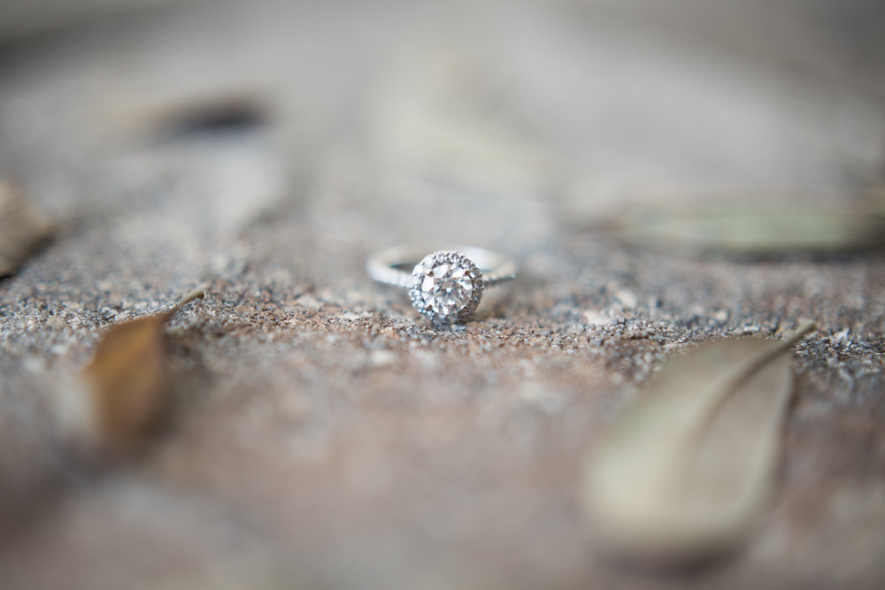 up the creek farms malabar fl engagement and wedding photos ring