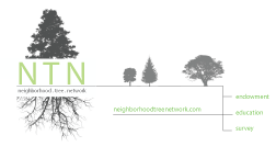 Neighborhood-tree-network-card.png