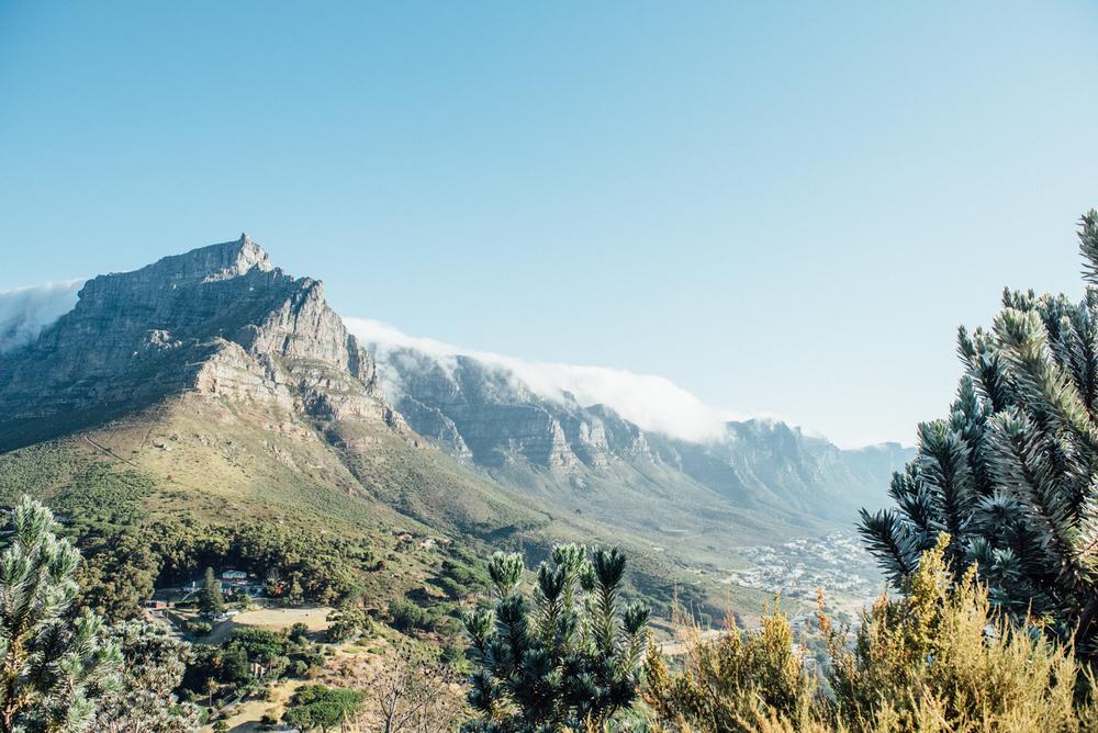 Capetown -25.jpg