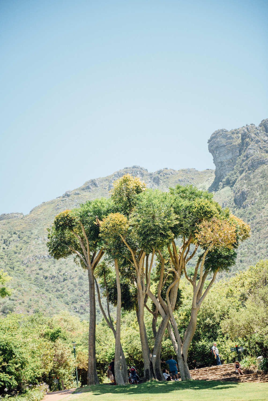 Capetown -53.jpg
