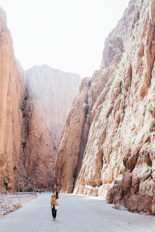 Sahara -10.jpg