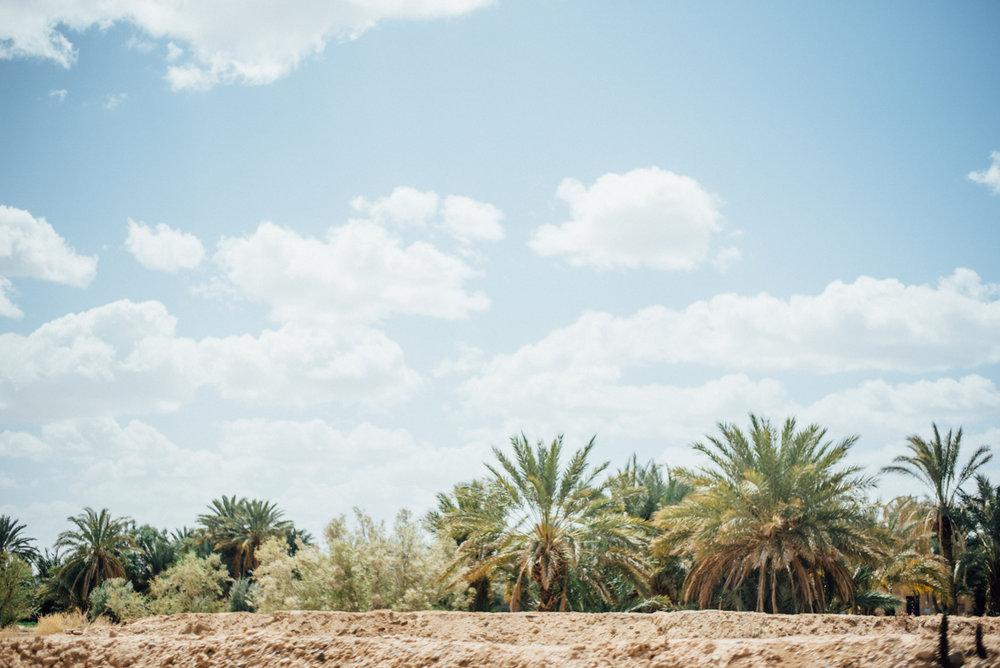 Sahara -11.jpg