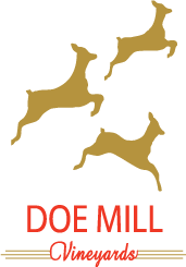 Doe Mill Vineyards
