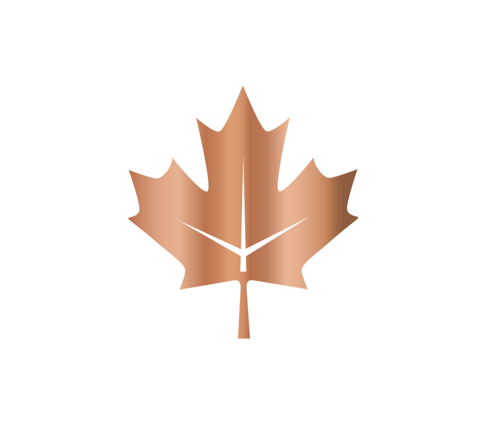 Information on Immigration to Canada, find out more about Federal Immigration programs including: Express Entry, Federal Skilled Worker Class, Federal Skilled Trades Class, Canadian Experience Class, Start-Up Visa, Ontario Immigrant Nominee Program, Comprehensive Ranking Score, Immigration Assessment, Free Immigration Assessment, CRS Calculator