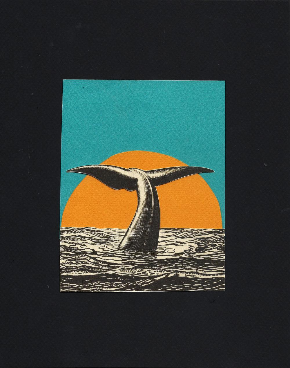 WhaleMoonCollage.jpg