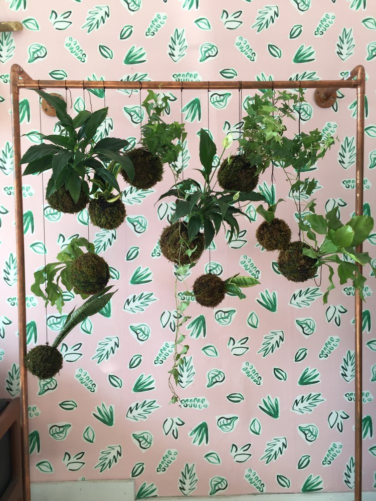 Plants on Pink Wallpaper by Kathryn Zaremba