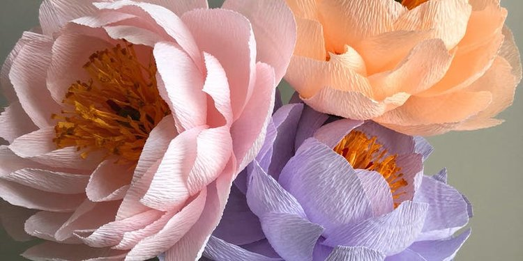The Art Of Crepe Paper Flower Making Peonies The Lemon Collective