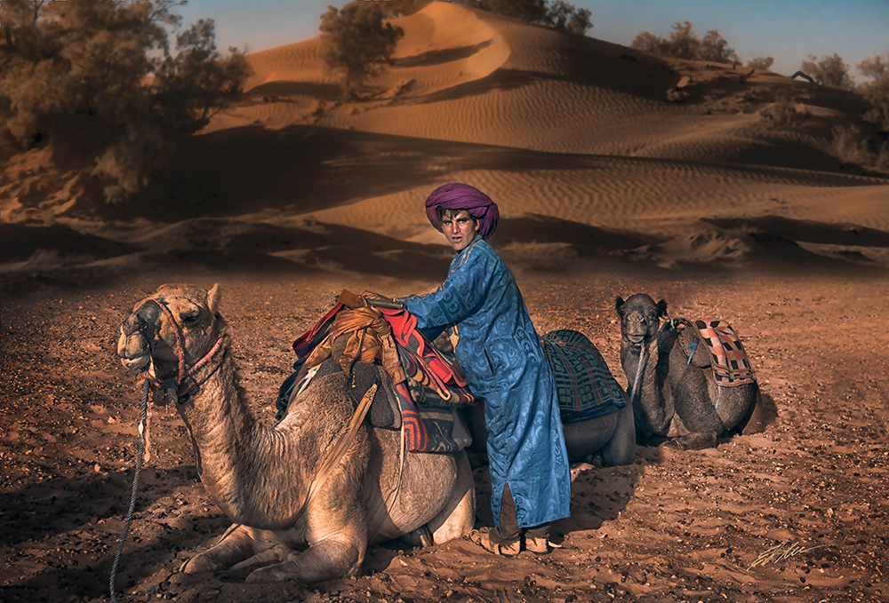 """Edward Masterson """"Put Your Camel to Bed"""""""