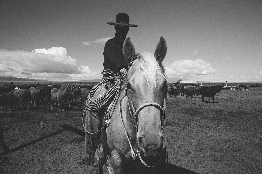 TheCowboy_01of01.jpg