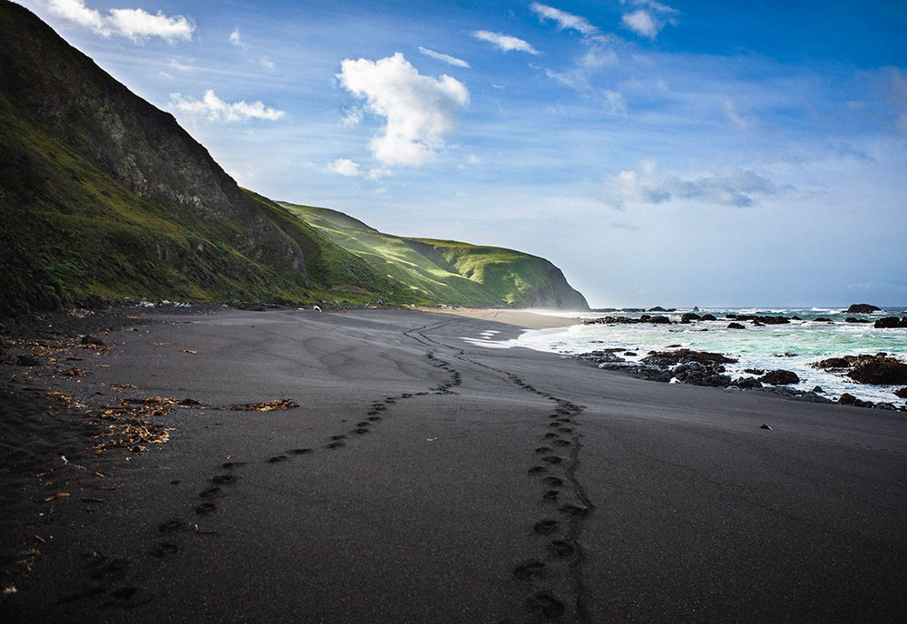 A Pair on Black Sand