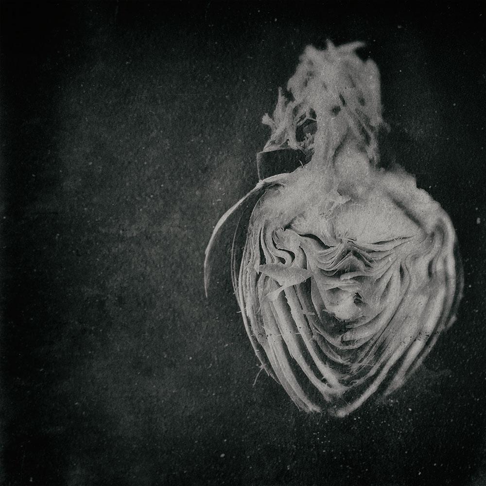EsmeeAarbodem_Heart_08.jpg